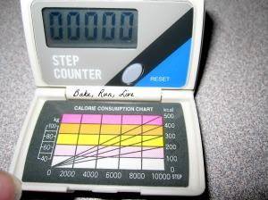 001 Pedometer